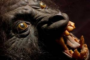 "Werewolf mask from ""An American Werewolf in London."" Credit"" EMP Museum"